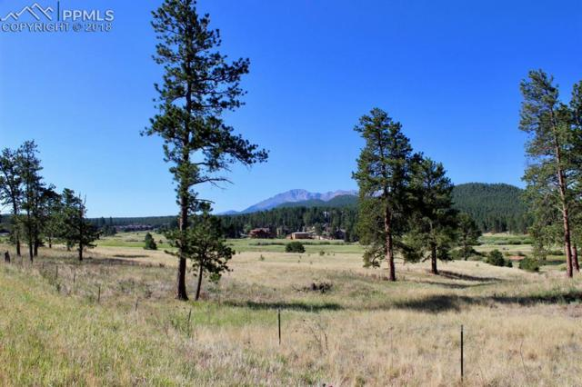 TBD Lucky Lady Drive, Woodland Park, CO 80863 (#5812816) :: Jason Daniels & Associates at RE/MAX Millennium