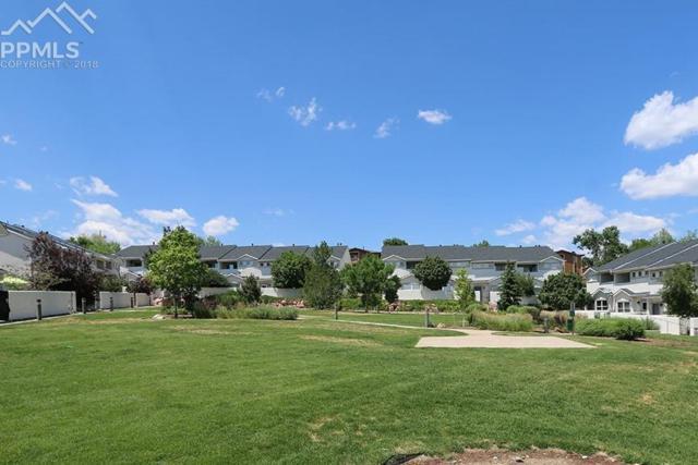 4320 Prestige Point, Colorado Springs, CO 80906 (#5816017) :: The Treasure Davis Team