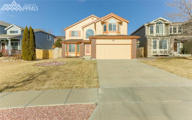 4202 Pony Tracks Drive, Colorado Springs, CO 80922 (#5819788) :: 8z Real Estate