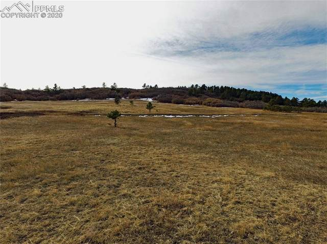 4874 Best Road, Larkspur, CO 80118 (#5831834) :: The Harling Team @ Homesmart Realty Group
