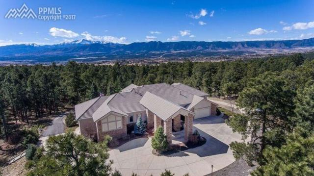 14595 Roller Coaster Road, Colorado Springs, CO 80921 (#5831926) :: 8z Real Estate