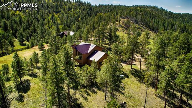 1042 County 112, Florissant, CO 80816 (#5836152) :: 8z Real Estate