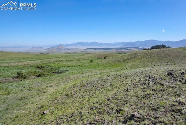 TBD County 118 Road, Hartsel, CO 80449 (#5847159) :: Action Team Realty