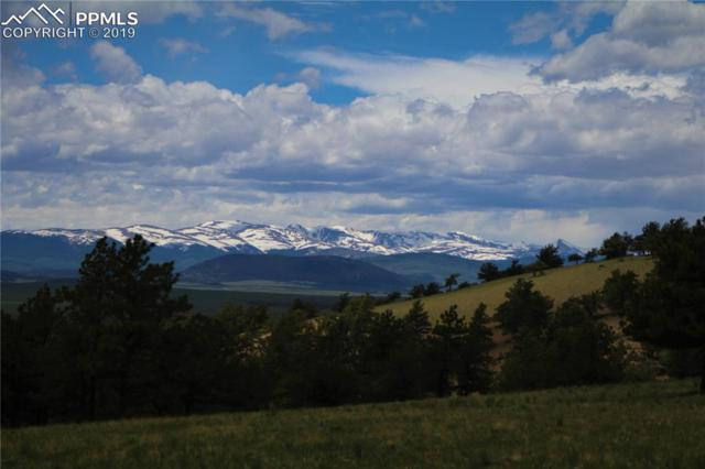 County 335 Road, Hartsel, CO 80449 (#5852757) :: Fisk Team, RE/MAX Properties, Inc.