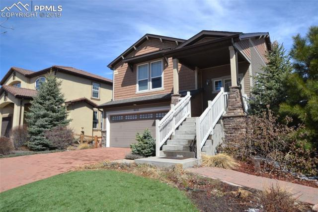 8252 Cypress Wood Drive, Colorado Springs, CO 80927 (#5866887) :: CC Signature Group