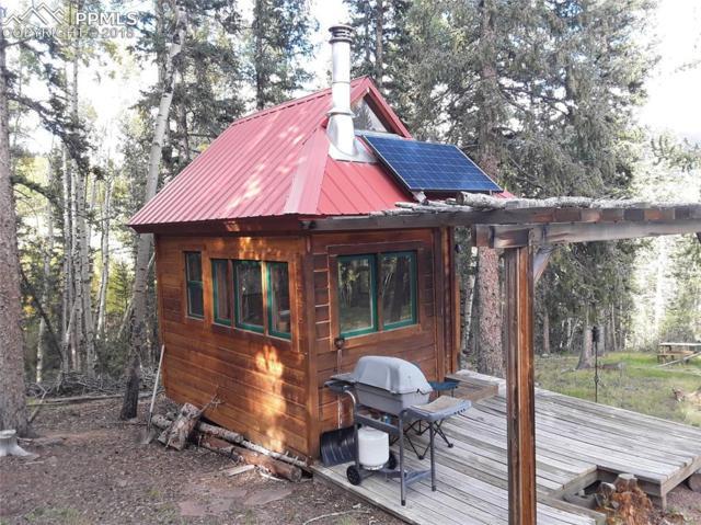 TBD County 61, Cripple Creek, CO 80813 (#5868045) :: 8z Real Estate