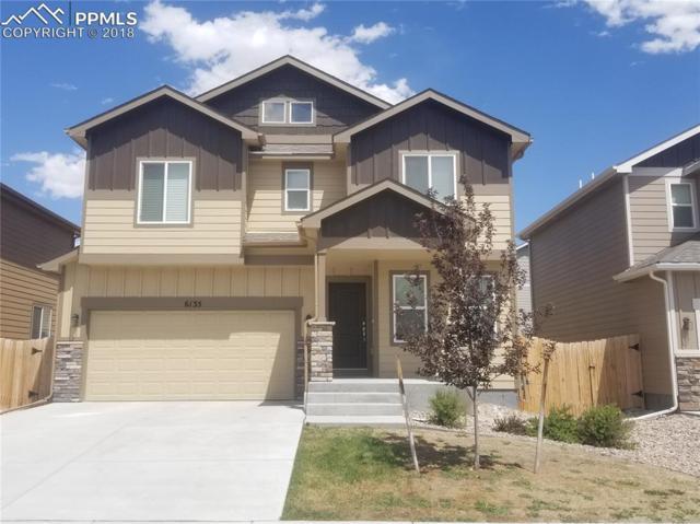 6135 Wallowing Way, Colorado Springs, CO 80925 (#5871138) :: Harling Real Estate