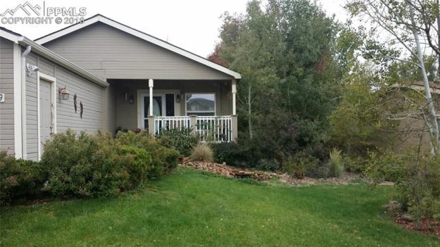 4079 Gray Fox Heights, Colorado Springs, CO 80922 (#5876940) :: Jason Daniels & Associates at RE/MAX Millennium