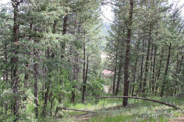 9320 Maveta Road, Cascade, CO 80809 (#5889111) :: Action Team Realty