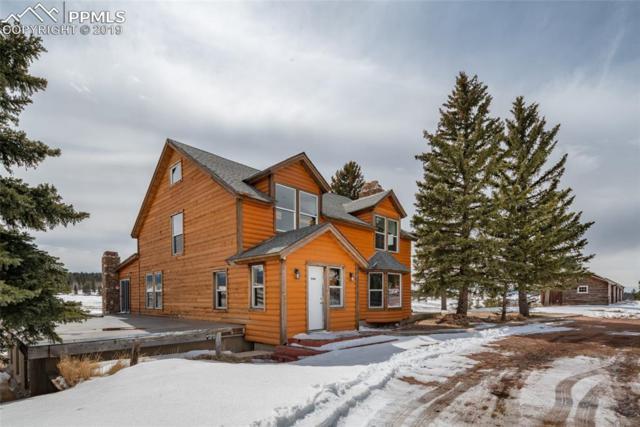 9614 Highway 24 Highway, Divide, CO 80814 (#5904488) :: Harling Real Estate