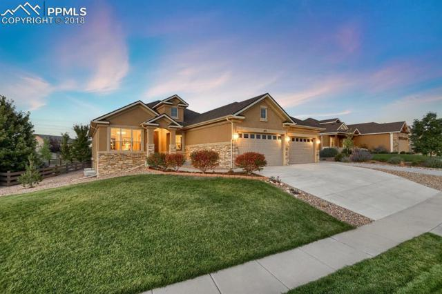 373 Coyote Willow Drive, Colorado Springs, CO 80921 (#5916117) :: The Kibler Group