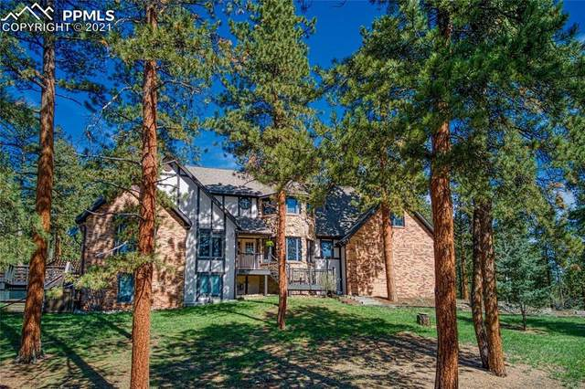 249 Woodside Drive, Pine, CO 80470 (#5927293) :: Venterra Real Estate LLC