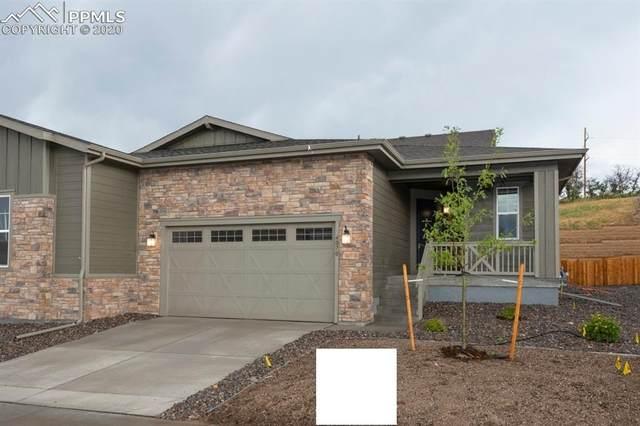 4070 Hidden Gulch Road, Castle Rock, CO 80104 (#5936113) :: CC Signature Group