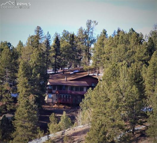 6 Pike View Circle, Divide, CO 80814 (#5954097) :: CC Signature Group