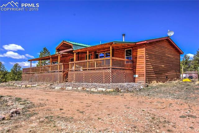 4575 Doe Valley Road, Guffey, CO 80820 (#5976759) :: Action Team Realty