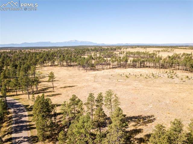 14854 Snowy Pine Point, Colorado Springs, CO 80908 (#5979370) :: Perfect Properties powered by HomeTrackR