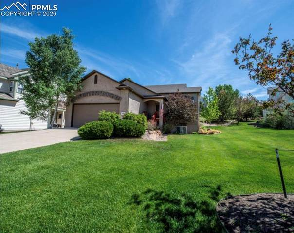 15890 Holbein Drive, Colorado Springs, CO 80921 (#5979996) :: Tommy Daly Home Team