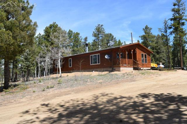 902 Rangeview Road, Divide, CO 80814 (#5982705) :: Harling Real Estate