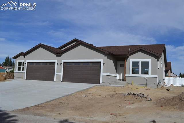 389 Buttonwood Place, Monument, CO 80132 (#6005444) :: Action Team Realty