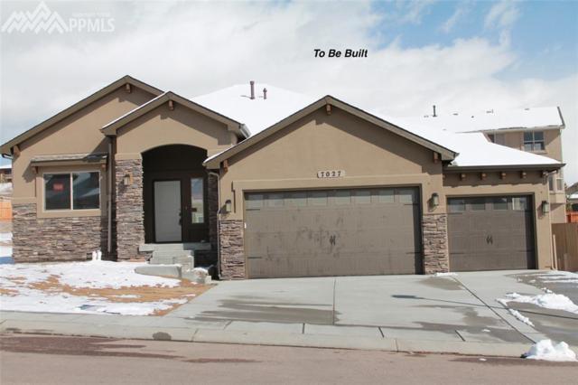 350 Doral Way, Colorado Springs, CO 80921 (#6011140) :: Fisk Team, RE/MAX Properties, Inc.