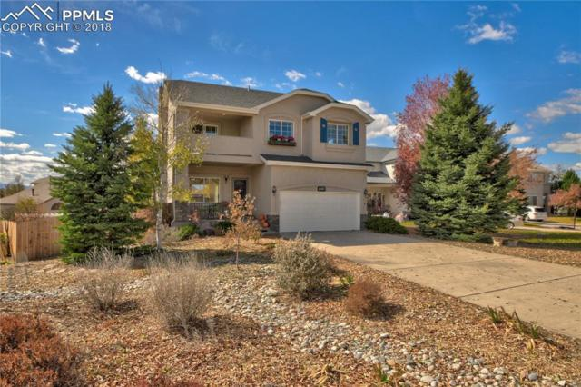 4881 Spotted Horse Drive, Colorado Springs, CO 80923 (#6020070) :: 8z Real Estate
