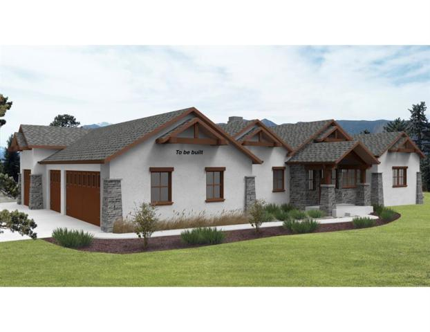 375 Mission Hill Way, Colorado Springs, CO 80921 (#6021519) :: Fisk Team, RE/MAX Properties, Inc.