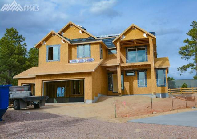 16489 E Clandestine Court, Monument, CO 80132 (#6040109) :: The Hunstiger Team