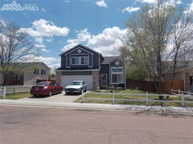 4674 Witches Hollow Lane, Colorado Springs, CO 80911 (#6065881) :: 8z Real Estate