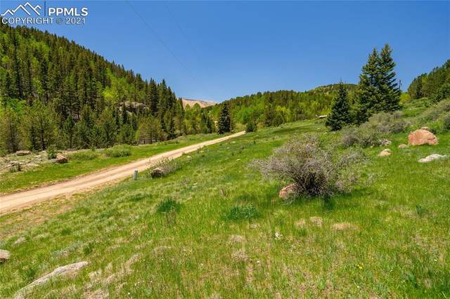 00 Beaver Valley Road, Victor, CO 80860 (#6067518) :: Action Team Realty
