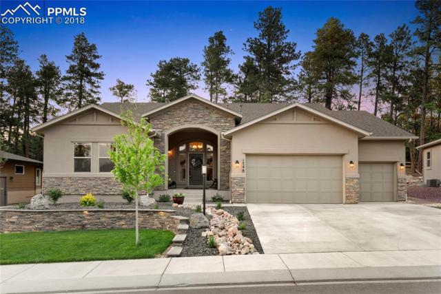 1746 Catnap Lane, Monument, CO 80132 (#6070824) :: Jason Daniels & Associates at RE/MAX Millennium