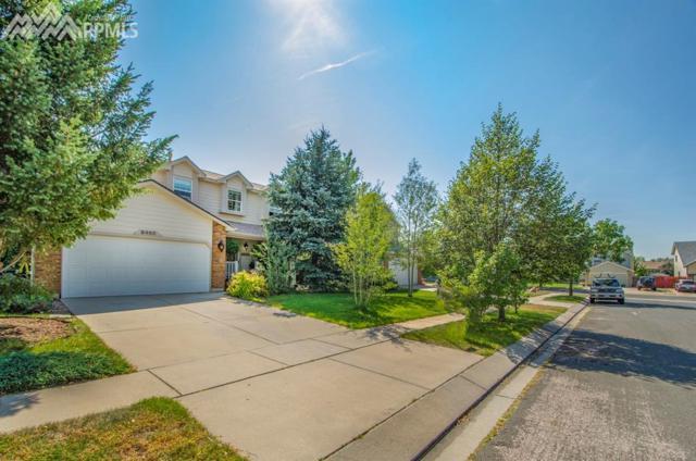 8460 Camfield Circle, Colorado Springs, CO 80920 (#6108789) :: 8z Real Estate