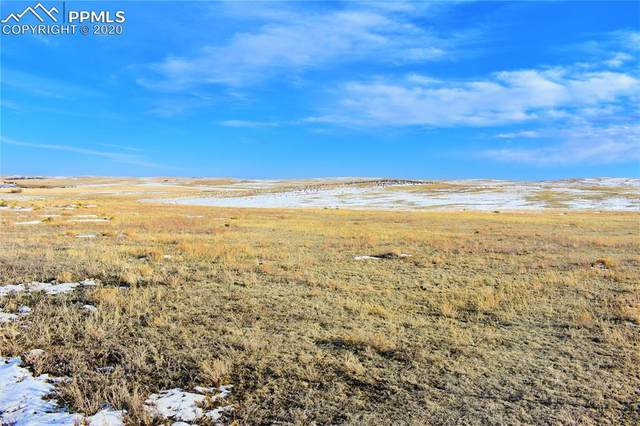 C County 73 Road, Calhan, CO 80808 (#6111009) :: Action Team Realty