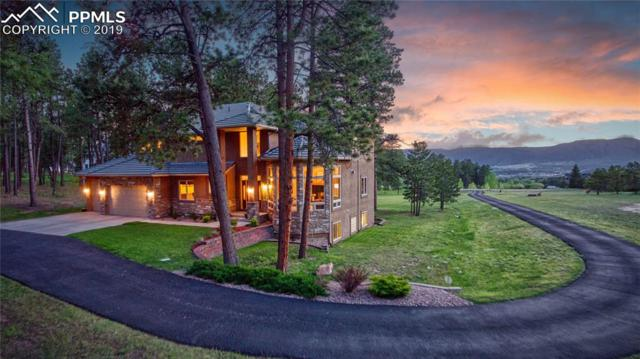 17563 Colonial Park Drive, Monument, CO 80132 (#6120952) :: Action Team Realty