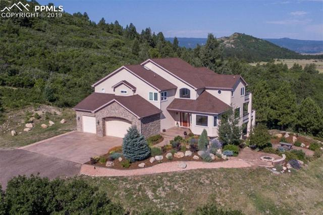14232 Straight Path Lane, Larkspur, CO 80118 (#6127628) :: Harling Real Estate