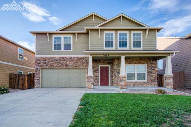 3693 Winter Sun Drive, Colorado Springs, CO 80925 (#6131048) :: Harling Real Estate