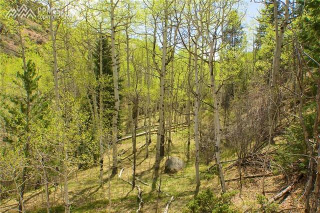 750 Lost Canyon Heights Heights, Cripple Creek, CO 80813 (#6140182) :: 8z Real Estate