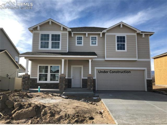 10738 Hidden Prairie Parkway, Fountain, CO 80817 (#6140691) :: Jason Daniels & Associates at RE/MAX Millennium