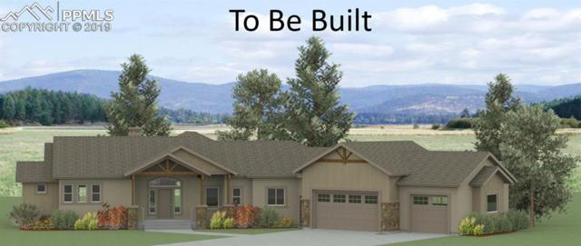 630 Meadowlark Lane, Woodland Park, CO 80863 (#6143511) :: Tommy Daly Home Team