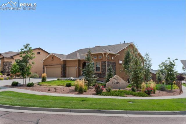 12790 Barossa Valley Road, Colorado Springs, CO 80921 (#6149450) :: Action Team Realty