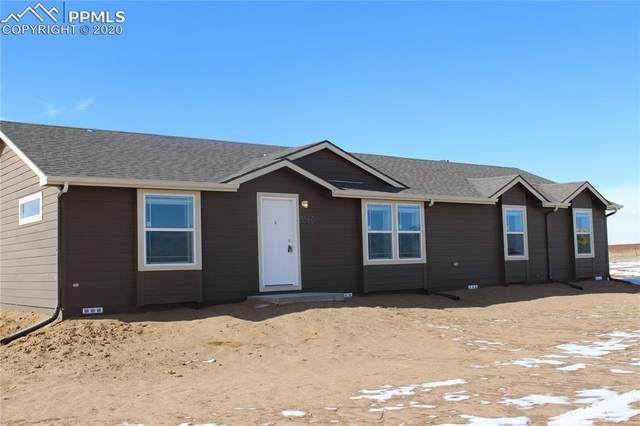 3560 Johnson Road, Rush, CO 80833 (#6153275) :: The Treasure Davis Team