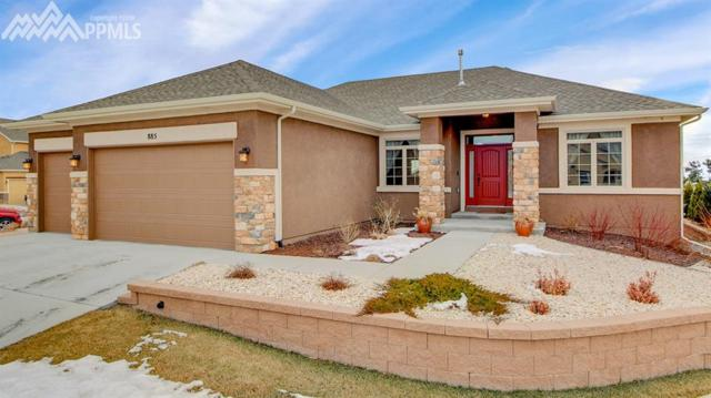 885 Black Arrow Drive, Colorado Springs, CO 80921 (#6158915) :: 8z Real Estate