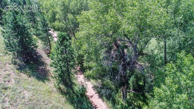 10815 W Highway 24 Highway, Green Mountain Falls, CO 80819 (#6169413) :: The Treasure Davis Team