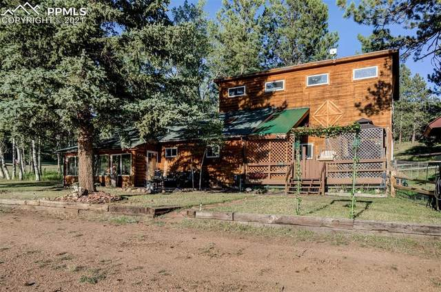 790 S Mountain Estates Road, Florissant, CO 80816 (#6174733) :: Tommy Daly Home Team