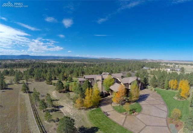 16845 Roller Coaster Road, Colorado Springs, CO 80921 (#6179911) :: 8z Real Estate