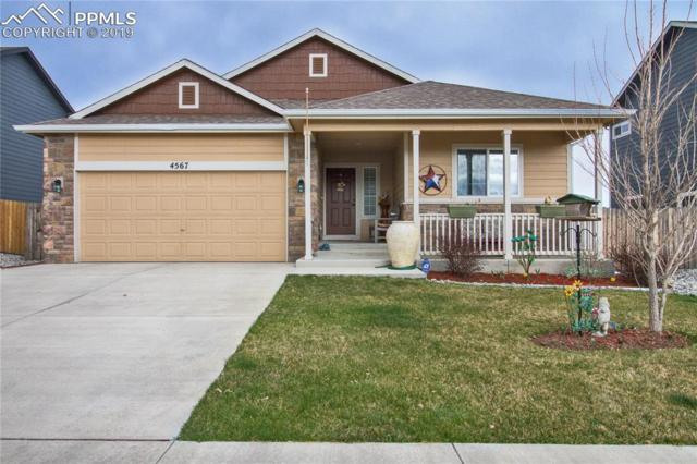 4567 Dancing Rain Way, Colorado Springs, CO 80911 (#6185861) :: Tommy Daly Home Team