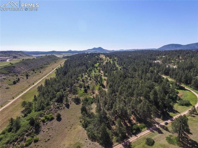 1000 Comanche Ridge Drive, Larkspur, CO 80118 (#6199516) :: 8z Real Estate