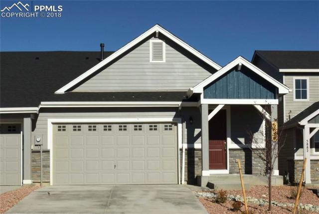 5874 Morning Light Terrace, Colorado Springs, CO 80919 (#6220699) :: Fisk Team, RE/MAX Properties, Inc.
