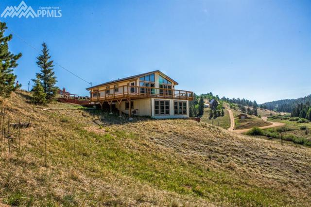178 Cottonwood Lake Drive, Divide, CO 80814 (#6244730) :: Jason Daniels & Associates at RE/MAX Millennium