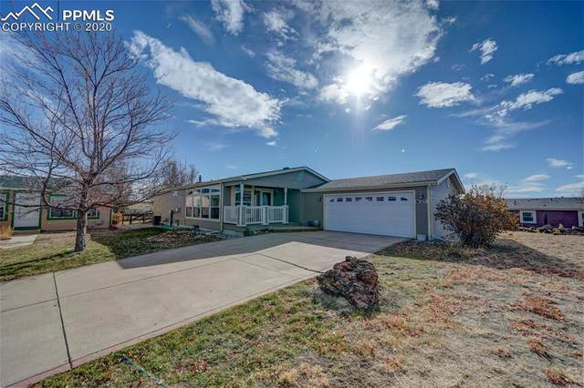 7695 Grizzly Bear Point, Colorado Springs, CO 80922 (#6264941) :: The Daniels Team