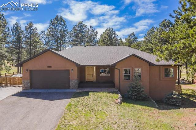 1198 Ptarmigan Drive, Woodland Park, CO 80863 (#6300309) :: Action Team Realty